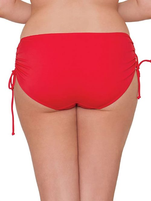Curvy Kate Bon Voyage Swim Brief